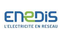 Logo enedis Client Smart Paddle